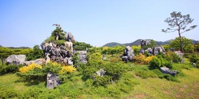내장산_단풍생태공원